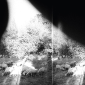 GODSPEED YOU! BLACK EMPEROR-Asunder, Sweet & Other Sides