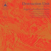 DESTRUCTION UNIT-Negative Feedback Resistor