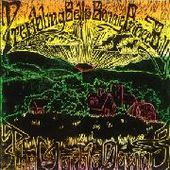 TREMBLING BELLS & BONNIE 'PRINCE' BILLIE-Marble Down