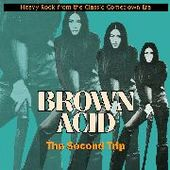 V/A-Brown Acid: The Second Trip