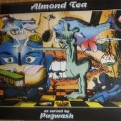 PUGWASH-Almond Tea (green)