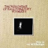 FELLOWSHIP OF HALLUCINATORY VOYAGERS-This Is No Wilderness (black)