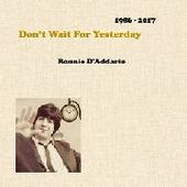 D'ADDARIO, RONNIE-Don't Wait For Yesterday 1986-2007