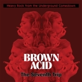 V/A-Brown Acid: The Seventh Trip