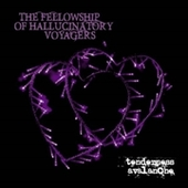 FELLOWSHIP OF HALLUCINATORY VOYAGERS-Tenderness Avalanche