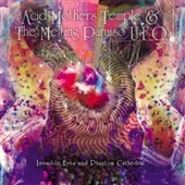 ACID MOTHERS TEMPLE & THE MELTING PARAISO U.F.O.-Invisible Eyes And Phantom Cathedral (black)