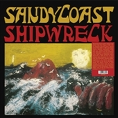 SANDY COAST-Shipwreck
