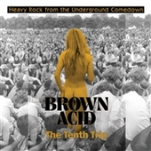 V/A-Brown Acid: The Tenth Trip
