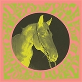 MELODY FIELDS-Broken Horse EP (white)