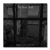 NOISE BIRDS-The Dark Sea Hides A Bright Light